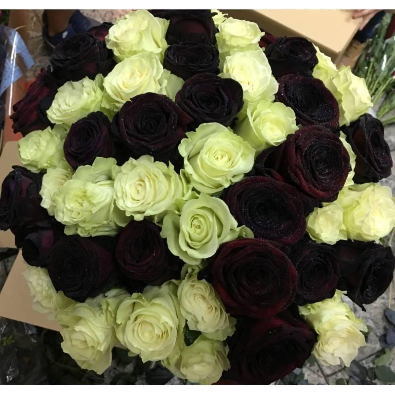 Rosas Negras Y Blancas Floresnuevascom