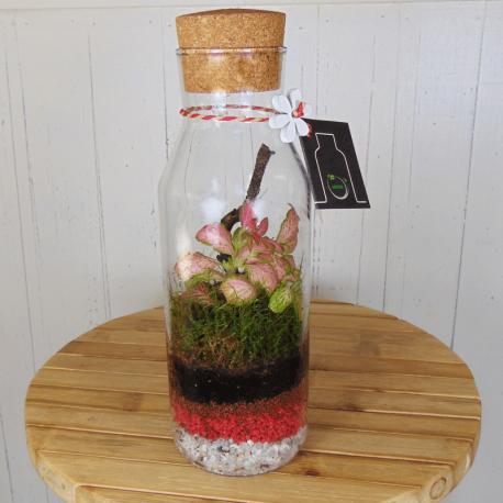 Mini jardín en cristal