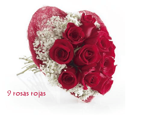 bouquet_corazon_9_rosas (1)