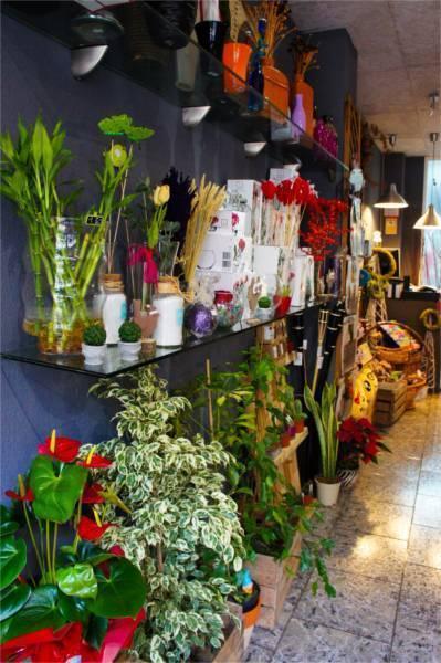 floresnuevas-tienda.jpg