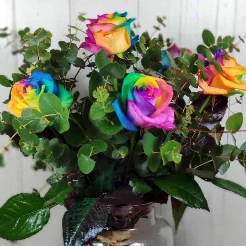 Ramo de rosas Raimbow