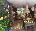 Tienda FloresNuevas.com L'Eliana